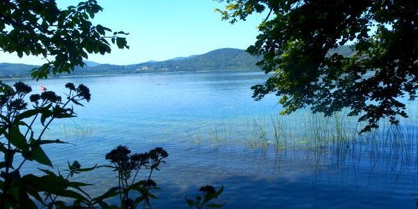 Auf dem Pellenzer Seepfad am Laacher See