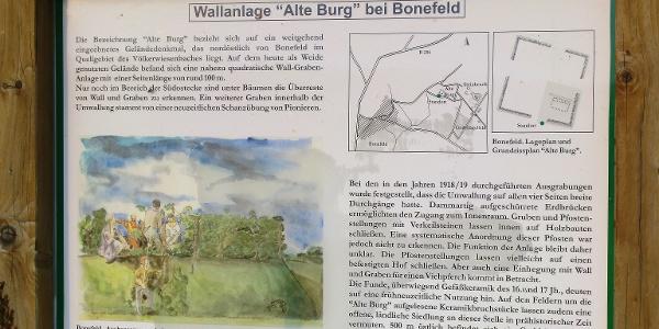 Alte Burg Bonefeld