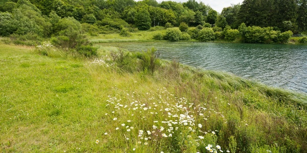 Freilinger See