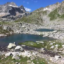 Foto von Bergtour: Lai Blau am Lukmanierpass • Graubünden (27.07.2018 13:12:45 #2)