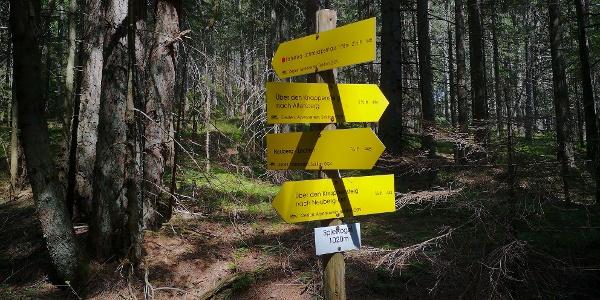 Wichtiger Wegknoten bei Neuberg