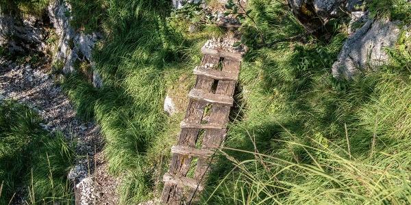 Holzbrücke im Rinnkendlsteig