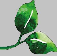 Logo Gurktaler Kräuterparadies