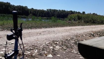 Rückweg entlang der Donau