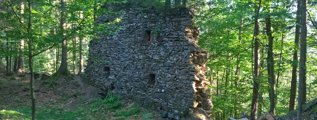 Ruinenreste Alt Leonrod