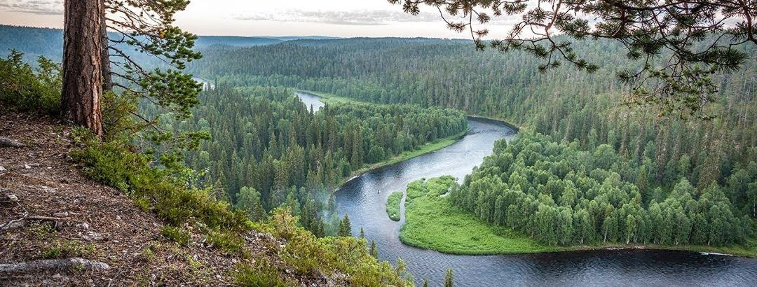 Summer in Ruka Kuusamo