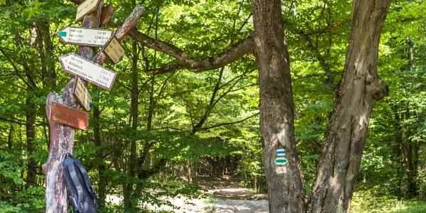 Útbaigazító táblák a Kisinóci-réten