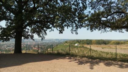 Radebeul-Weinberg, oberhalb der größten Treppenanlage Sachsens