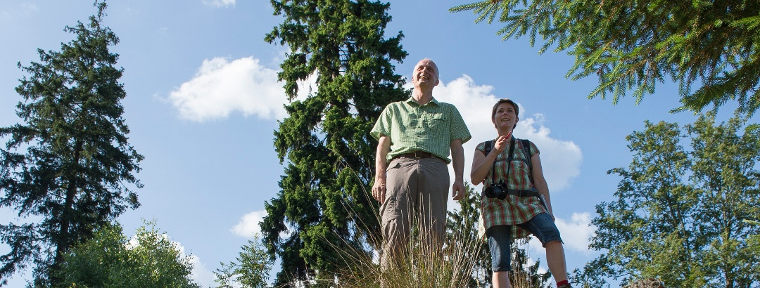 Die Trödelsteine in Burbach