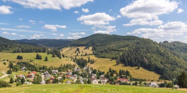 Muggenbrunn