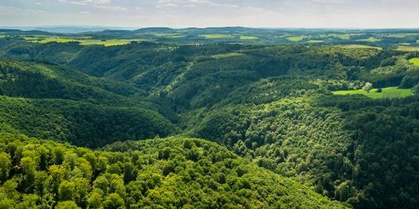 Ausblick vom Eifelblick Achterhöhe_Erlebnisweg Achterhöhe