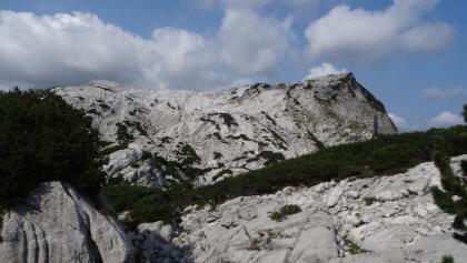 zwischen Röllsattel und der Grube unterhalb vom 9er-Koge