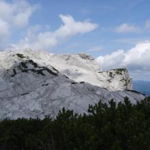 Blick vom 9er-Kogel Gipfel auf den 10er (mit Latschen) und 11er im Hintergrund