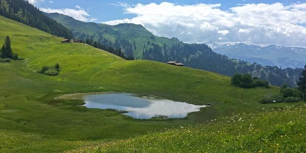 Der Stelsersee ist ein Hochmoorsee auf dem Stelserberg.