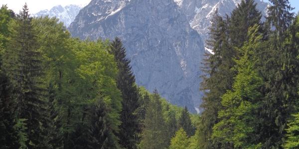 Blick auf den großen und kleinen Waxenstein