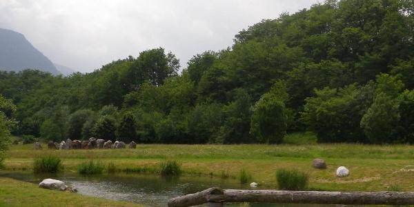 Parco Fluviale di Carzano