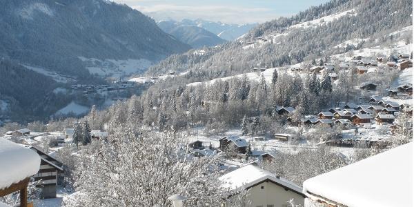Winterwanderung Fiesch - Fieschertal und zurück