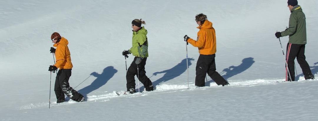 Schneeschuhwanderung Fiesch - Gibelegga - St. Anna - Bellwald