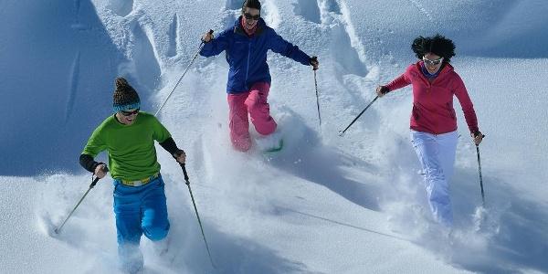 Schneeschuhwanderung von der Bettmeralp nach Riederalp und zurück auf die Bettmeralp