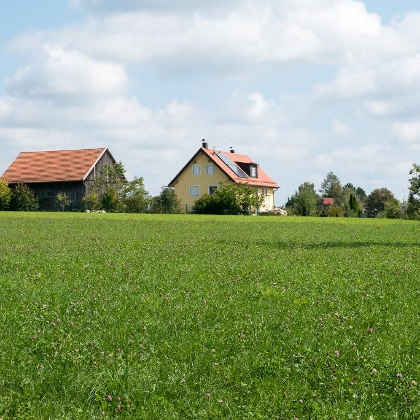 Oben auf dem Kühberg. Erste Gebäude von Bachern
