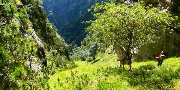 Vista all'indietro sull'ultimo tratto per il Forzelìn de la Val de l'Ègua.