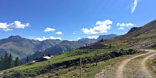 Alp Valpun, meist bis Mitte September bestossen.