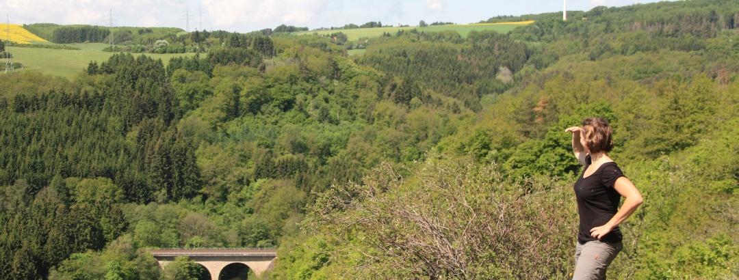 Aussichtspunkt Felsklipp