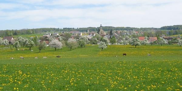Gemeinde Schongau im Frühling
