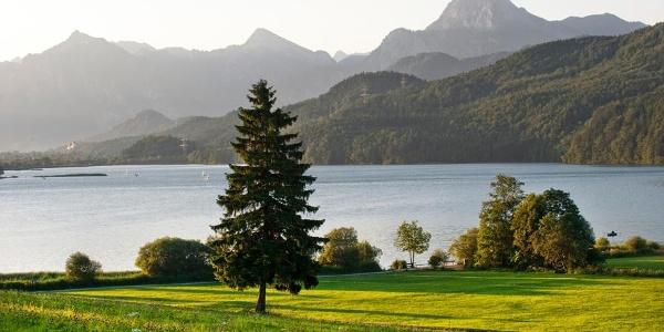 Blick auf den Weißensee