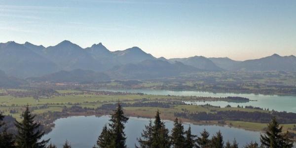 Panoramablick vom Buchenberg