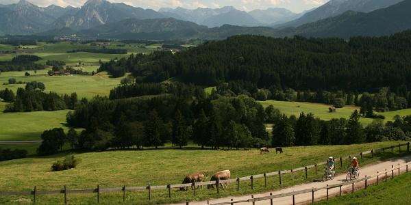 Anstieg mit Panorama zur Schlossbergalm
