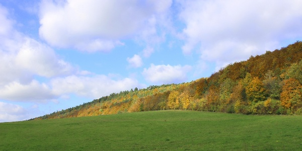 Aufstieg zu den Hörselbergen im Herbst