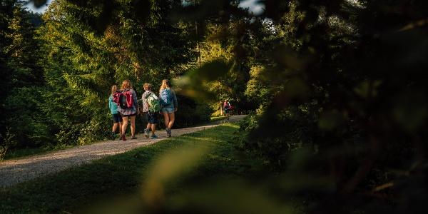 Naturschauspiel Kreuth - DER Wassererlebnisweg an der Weißach
