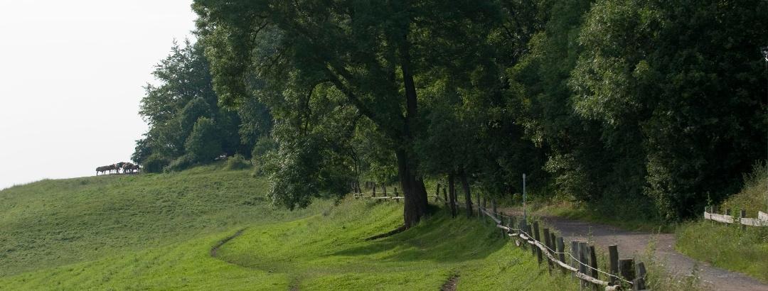 Landschaften für Mountainbiker