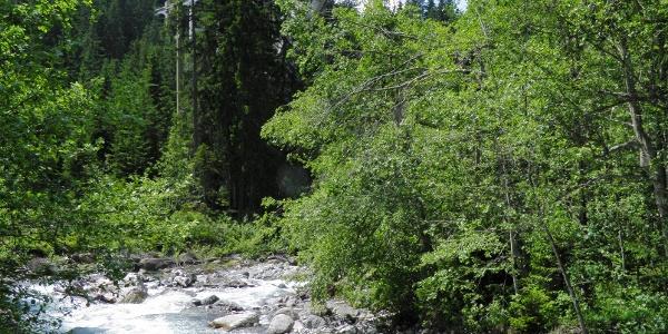 RhB Viadukt Langwies von Brücke Sappüner Bach