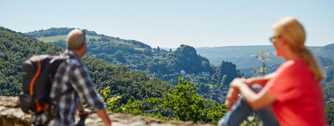 Blick von Schloss Wartenstein auf Steinkallenfels