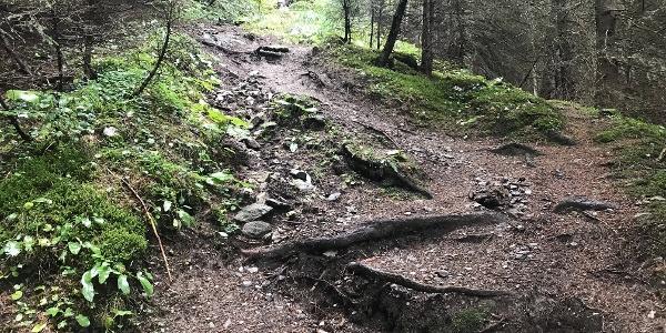 Aufstieg zur Trunahütte