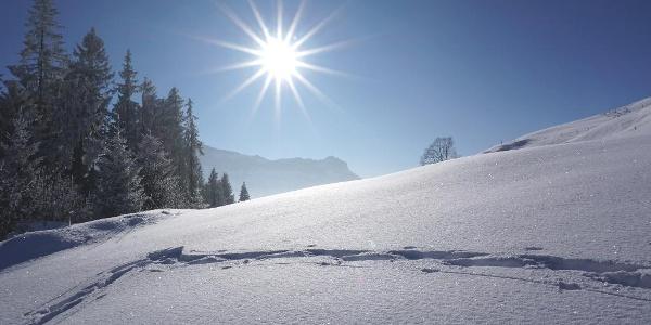 Aussich auf der Winterwanderung