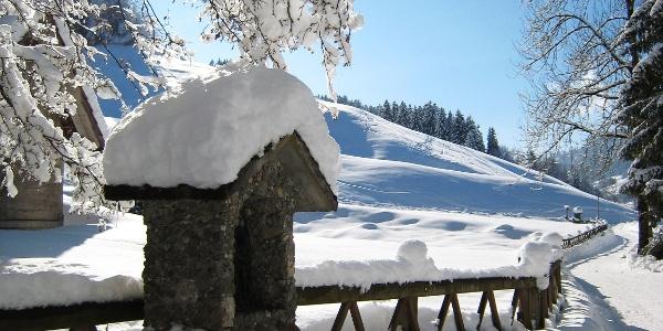 Verschneiter Weg zur Lourdes Grotte