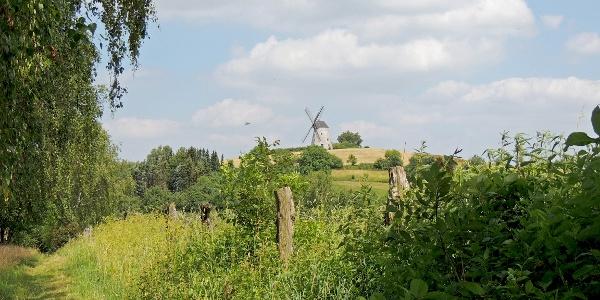 Blick auf Mühle