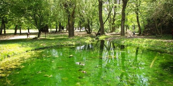 A Koloska-forrás a népszerű balatonfüredi kirándulóhelyen