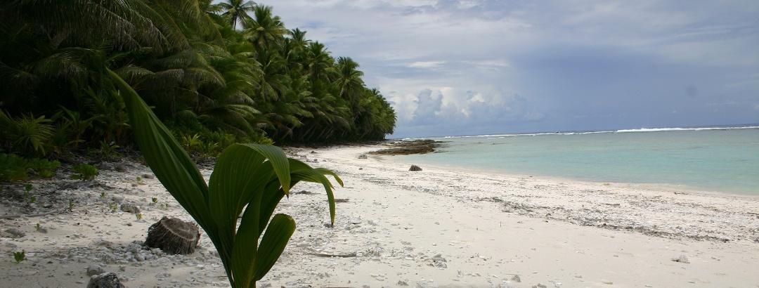 Sandstrand auf Amerikanisch-Samoa