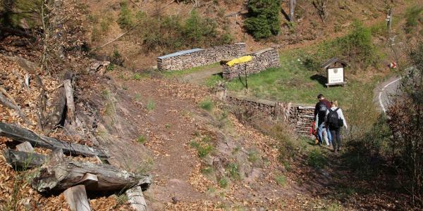 Der Abstieg nach Elmstein