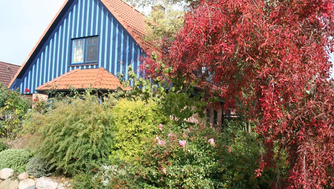 Das blaues Haus