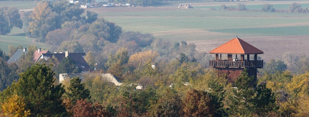 A solymári vár az Alsó-patak-hegy felől