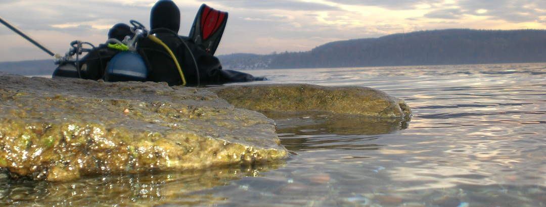 Tauchen am Bodensee