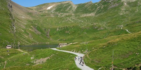 Wanderweg First - Bachseen.