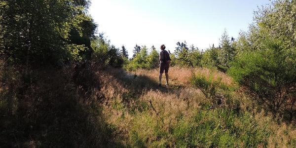 Bei de Hullerkeppe Wanderer