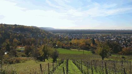 Blick vom Katzenberg auf Weingarten