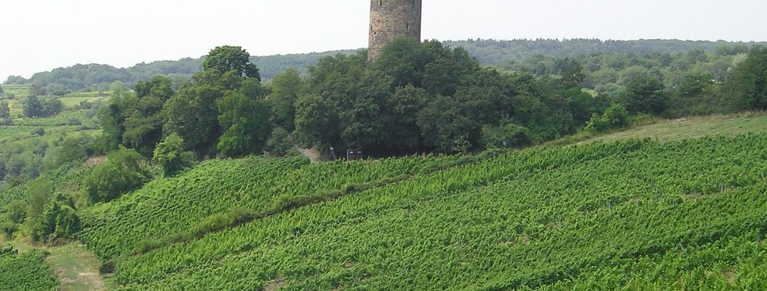 Ruine Scharfenstein